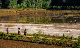 Plummeting groundwater imperils farming in South, Central Asia