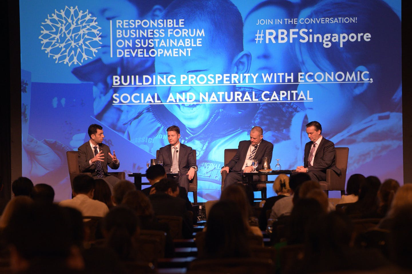 RBF natural capital panel