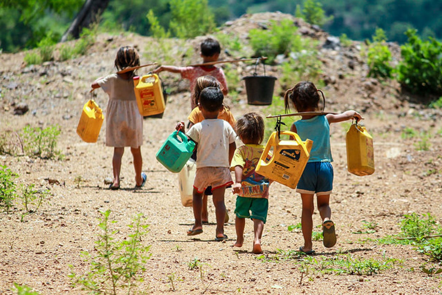 children carry gallons to fetch water from a river