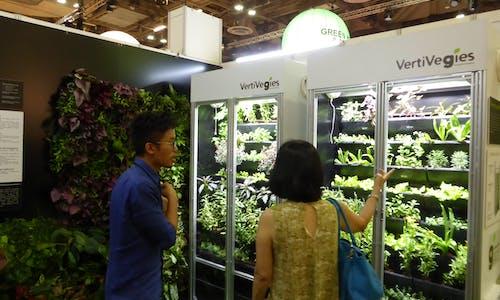 7 ideas for greener, healthier living