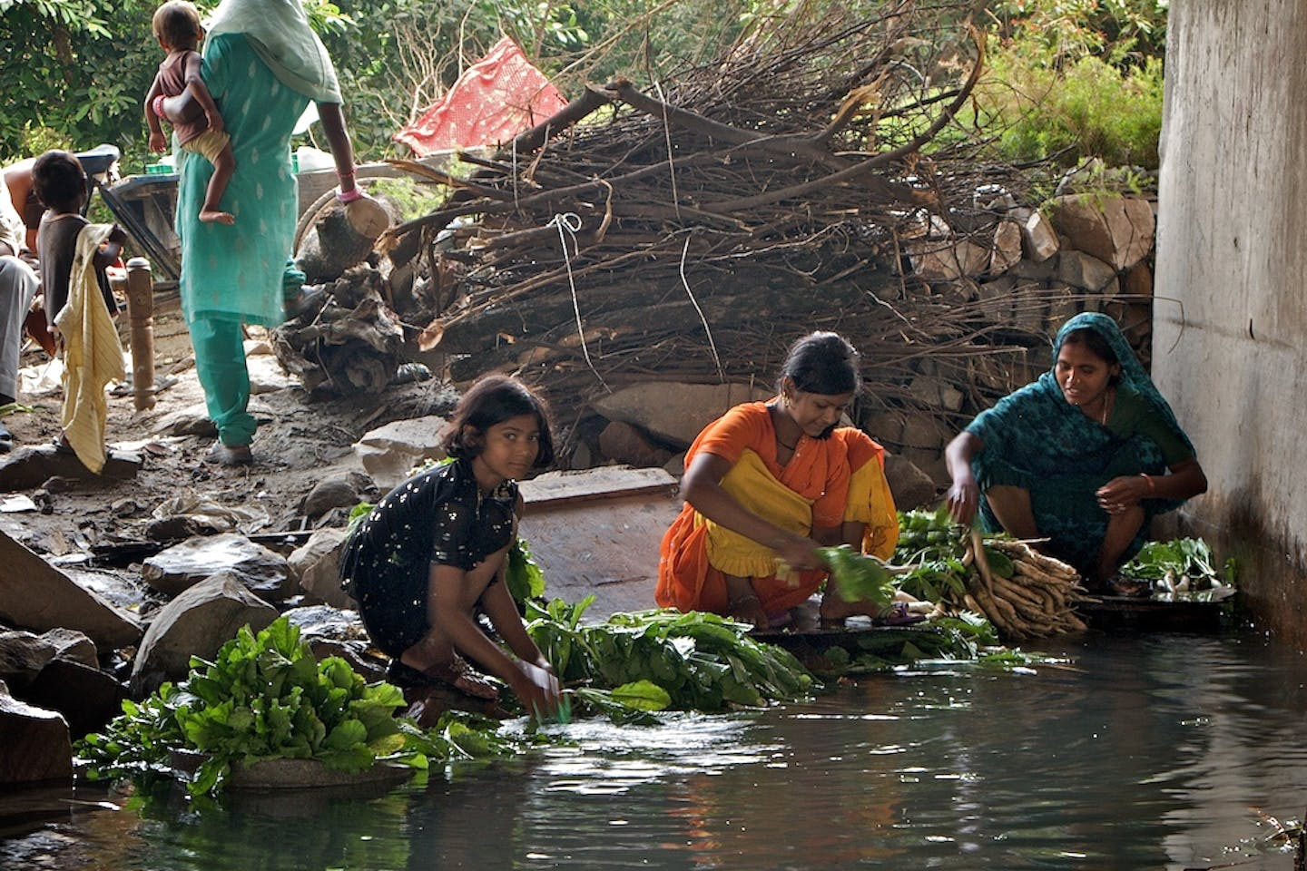 washing vegetables in the Yamuna river in India