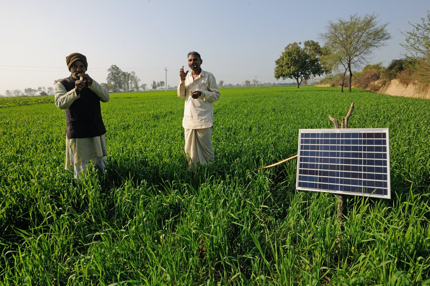 Solar panels in the fields in India