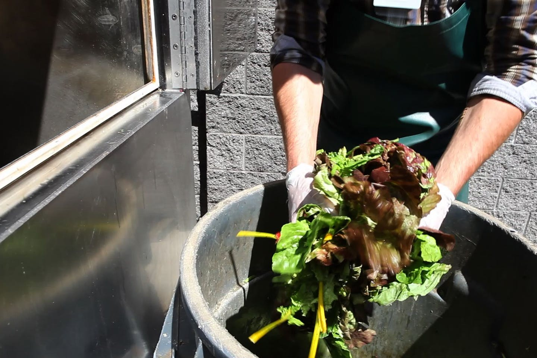 Supermarket staff composting food waste
