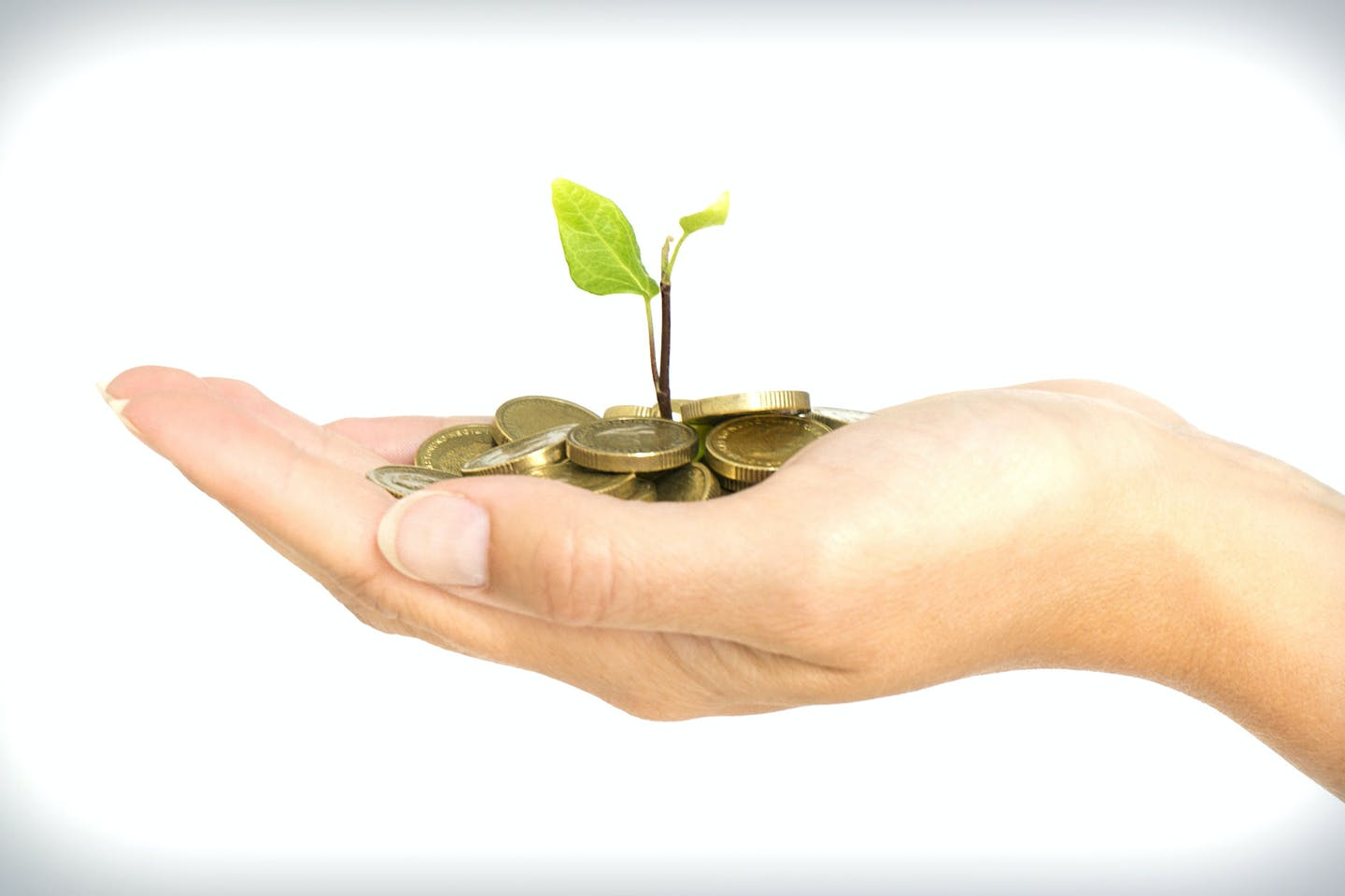growing sustainable finance