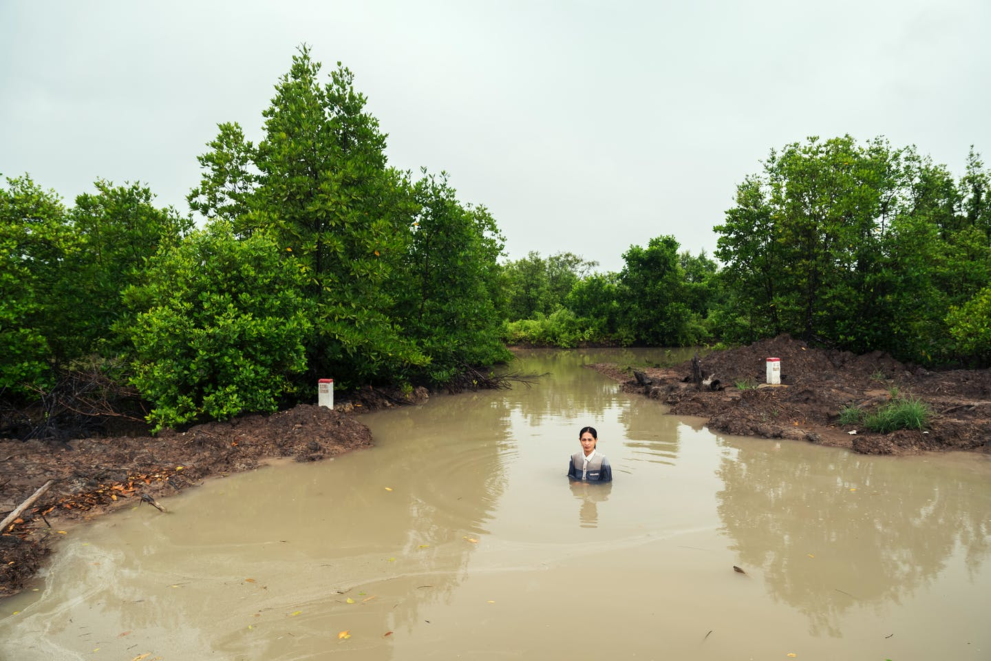 A Shrimp Catcher in a Mangrove Swamp Oh Soon-Hwa