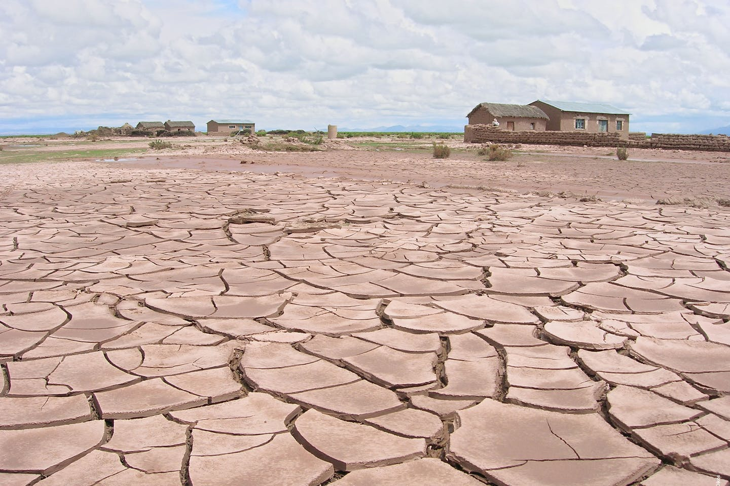 Drought stricken pampa in Bolivia
