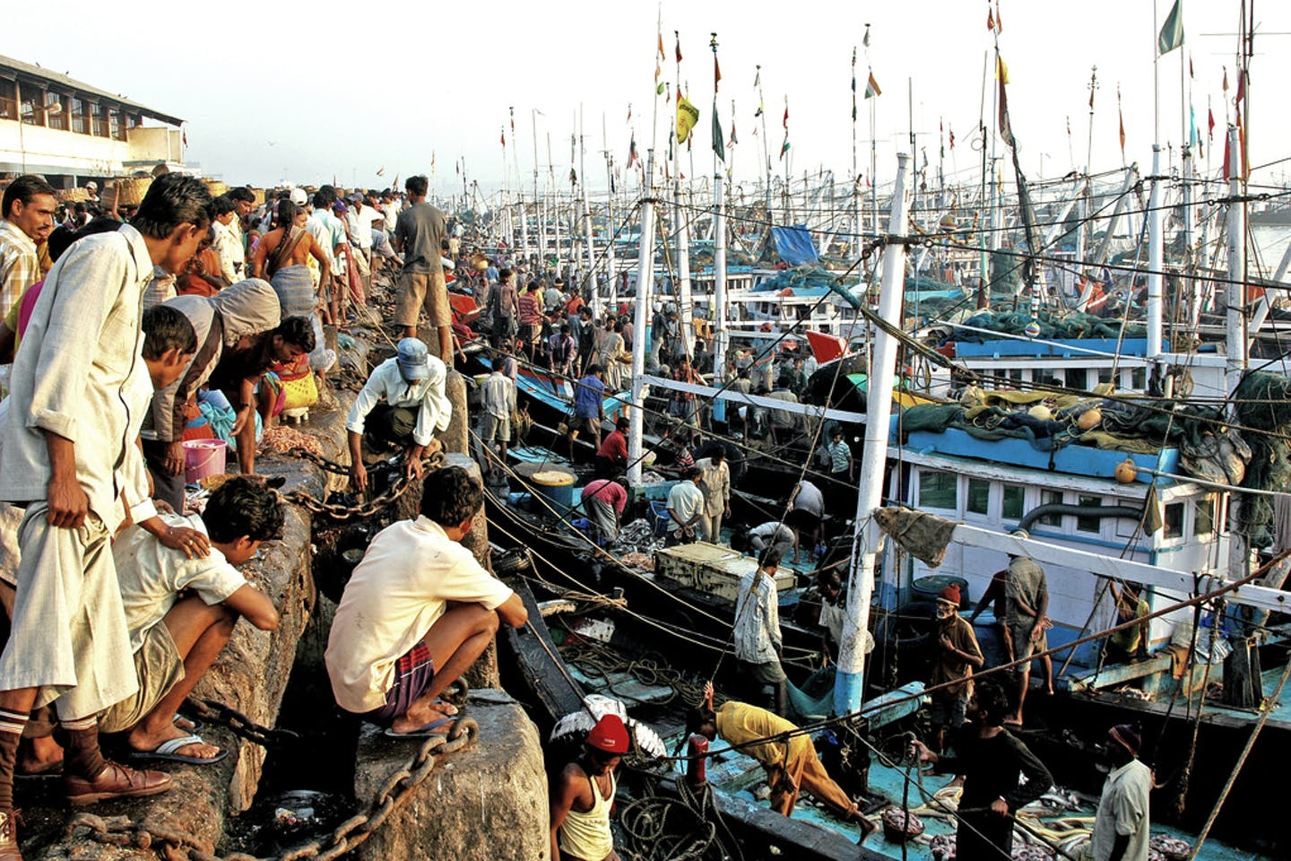 Fishing boats throng Mumbai's Ferry Wharf to unload their cargo and sell some fish