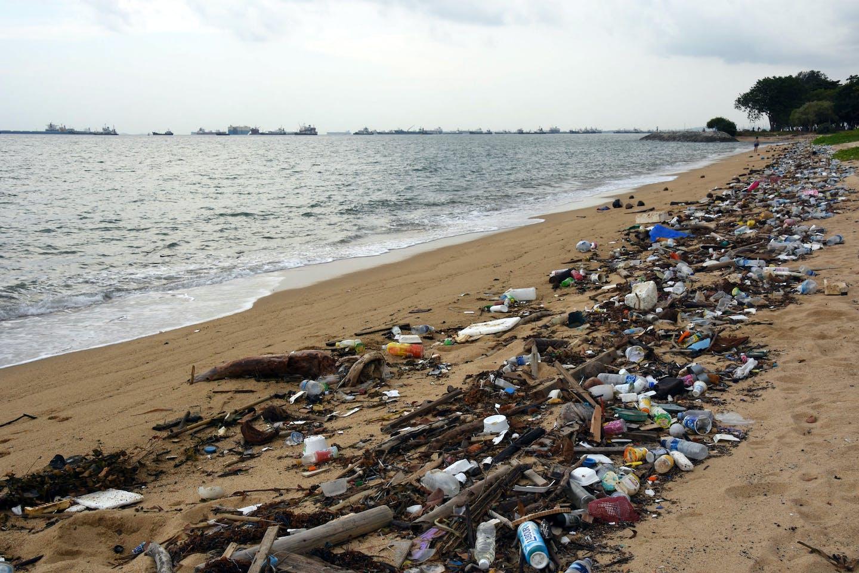 Litter along a beach in Singapore