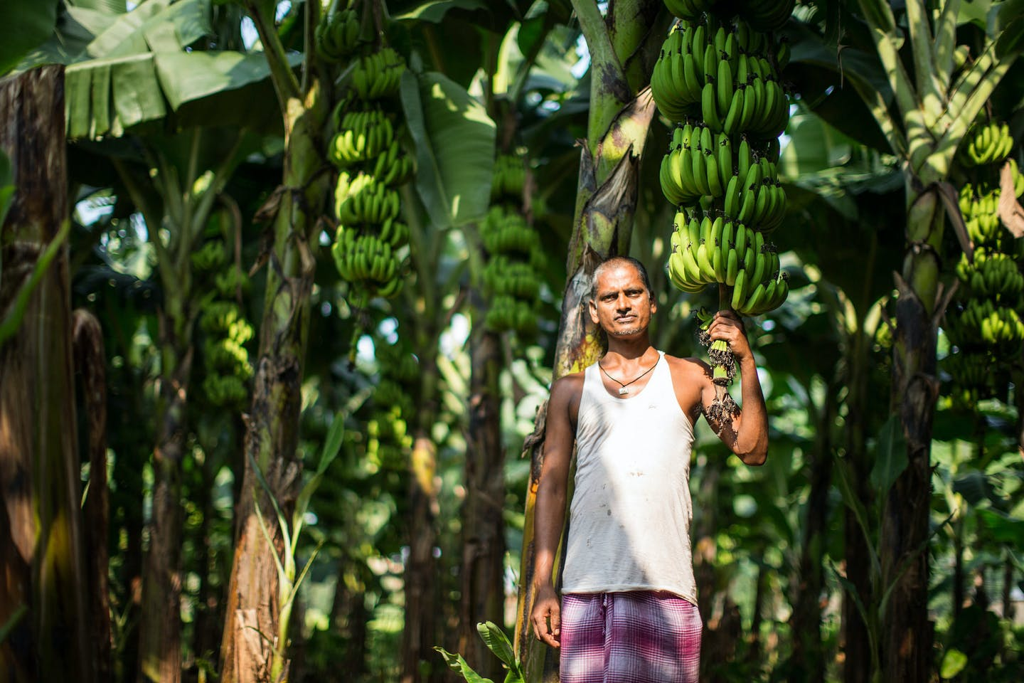A banana farmer in Nepal