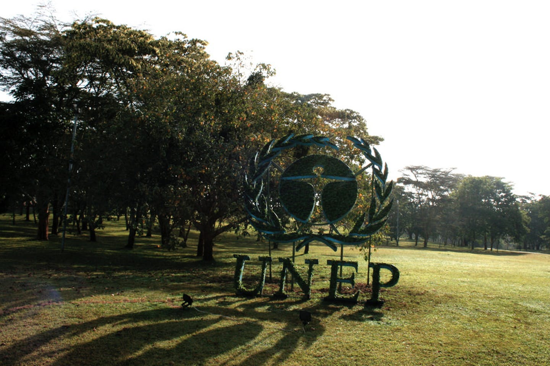 The UNEP logo