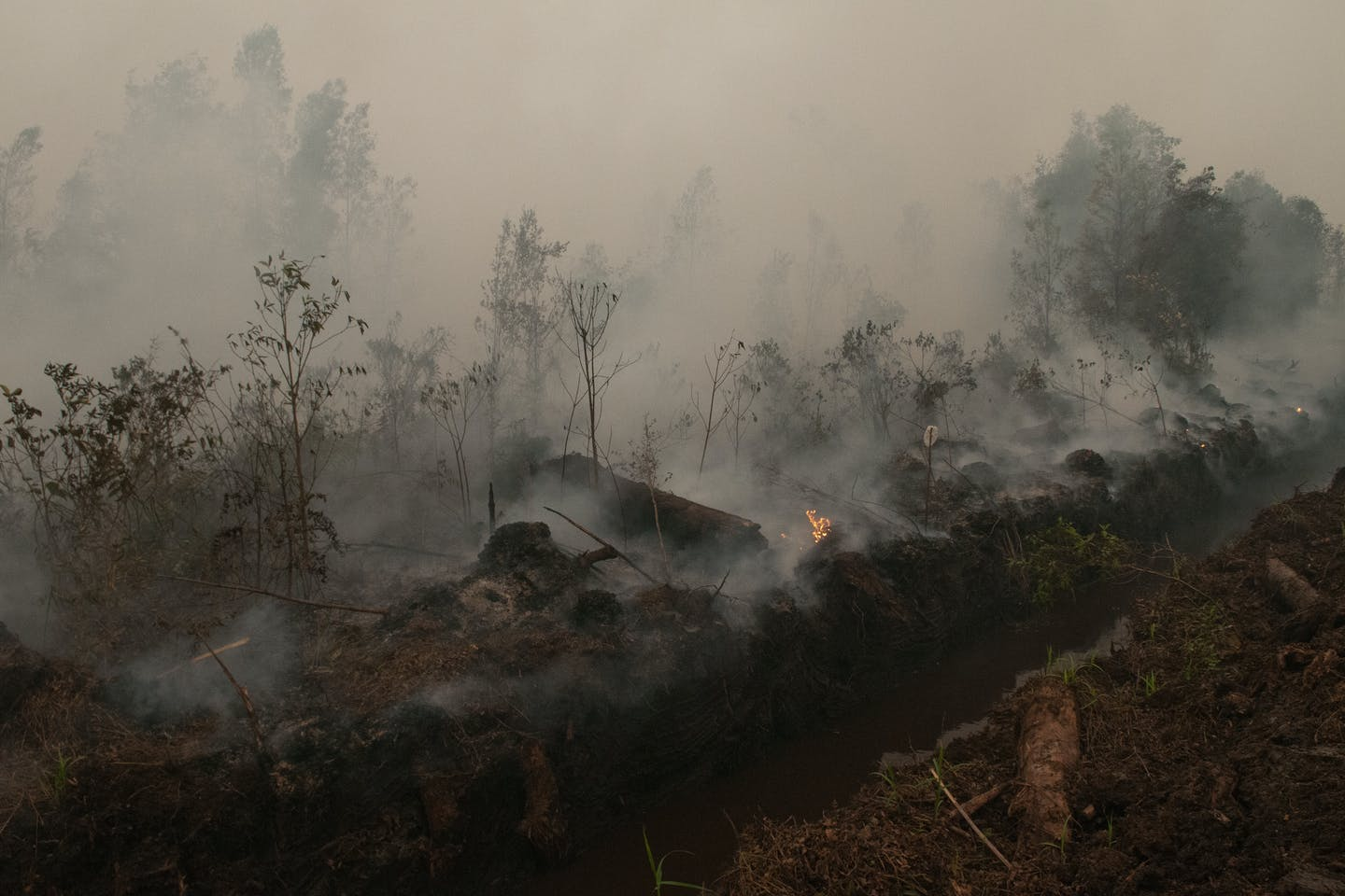 peat fires october 14