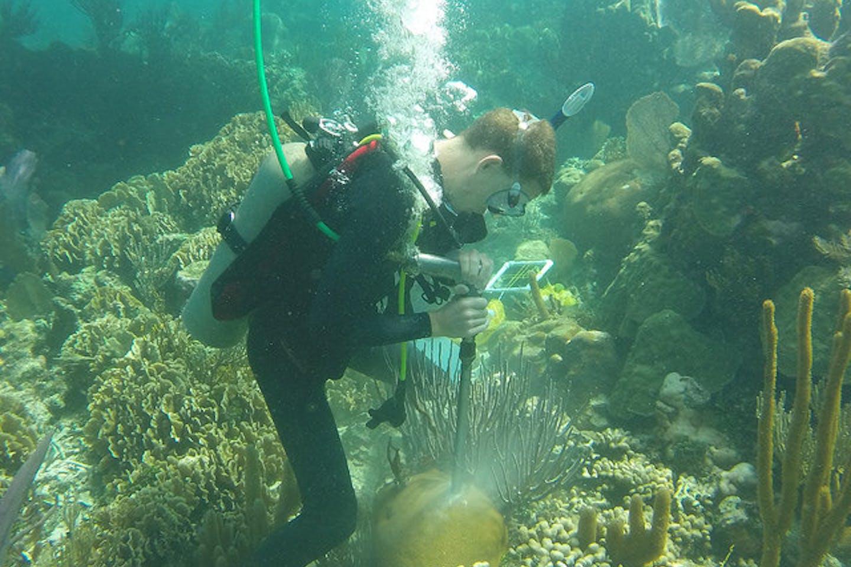 coral coring