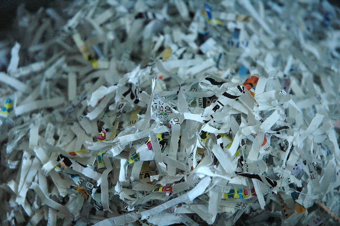 shredded sustainability reports