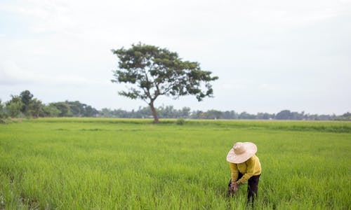 Despite challenges, Green Climate Fund is critical to global action