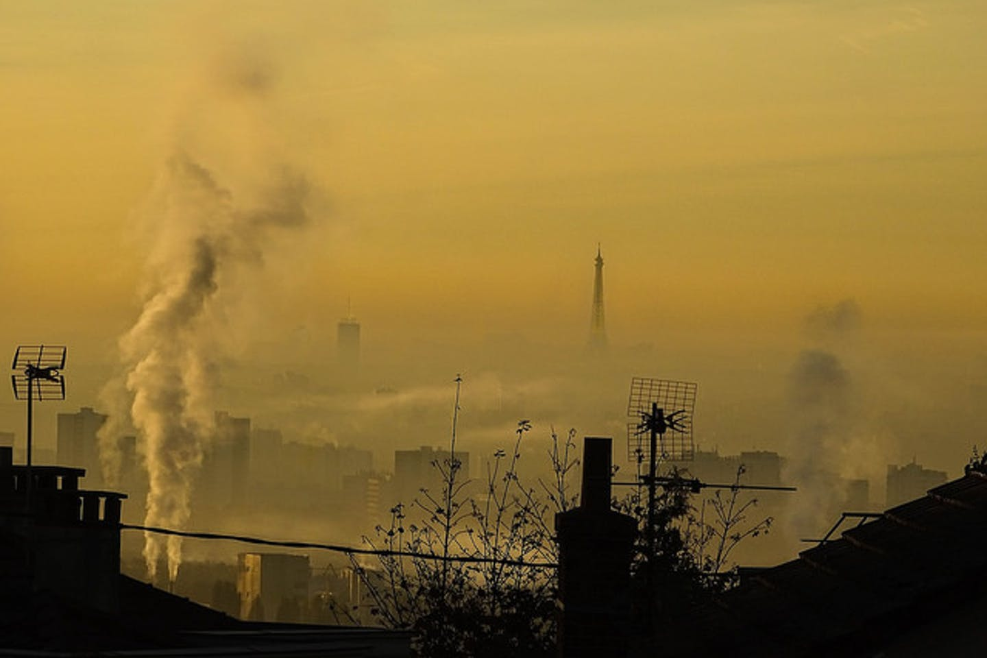 Eiffel Tower blanketed by pollution