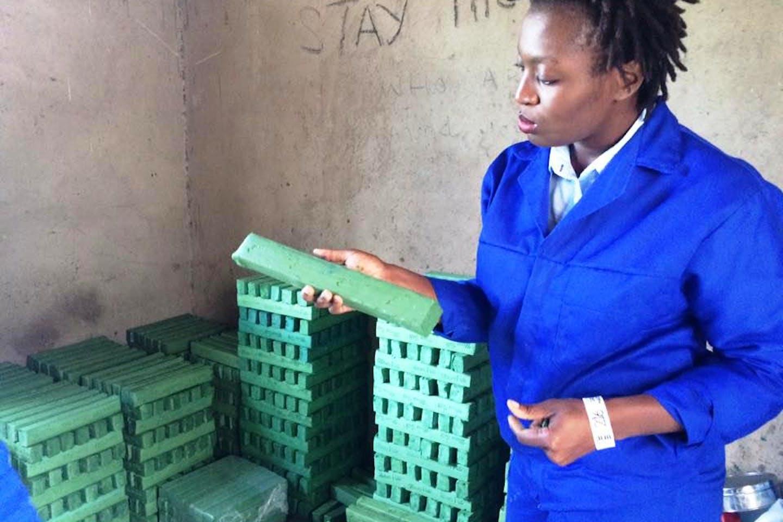 zimbabwe woman entepreneur