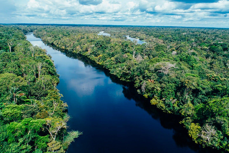 scenic Amazon