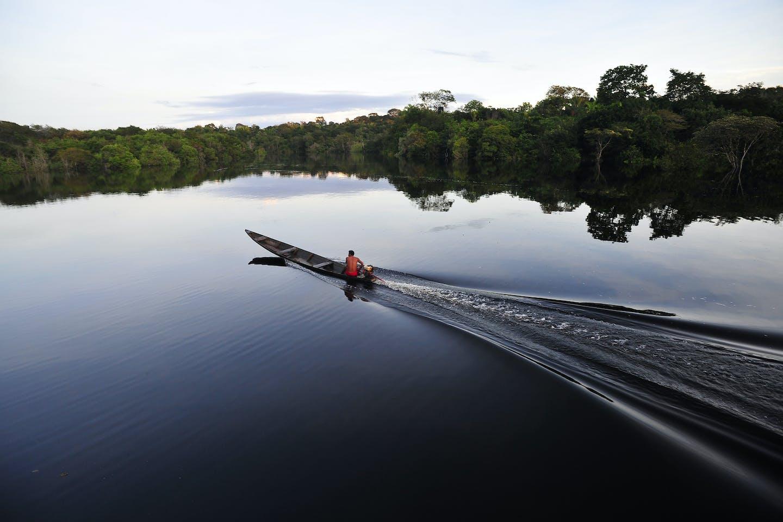 Dawn on the border of the Juma Reserve in the Brazilian Amazon