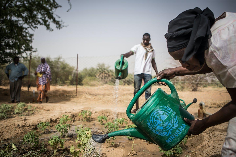 Mali farmers