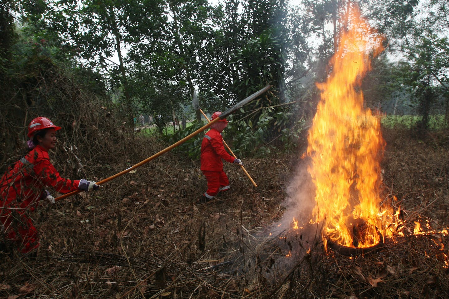 Stick firefighting in Indonesia