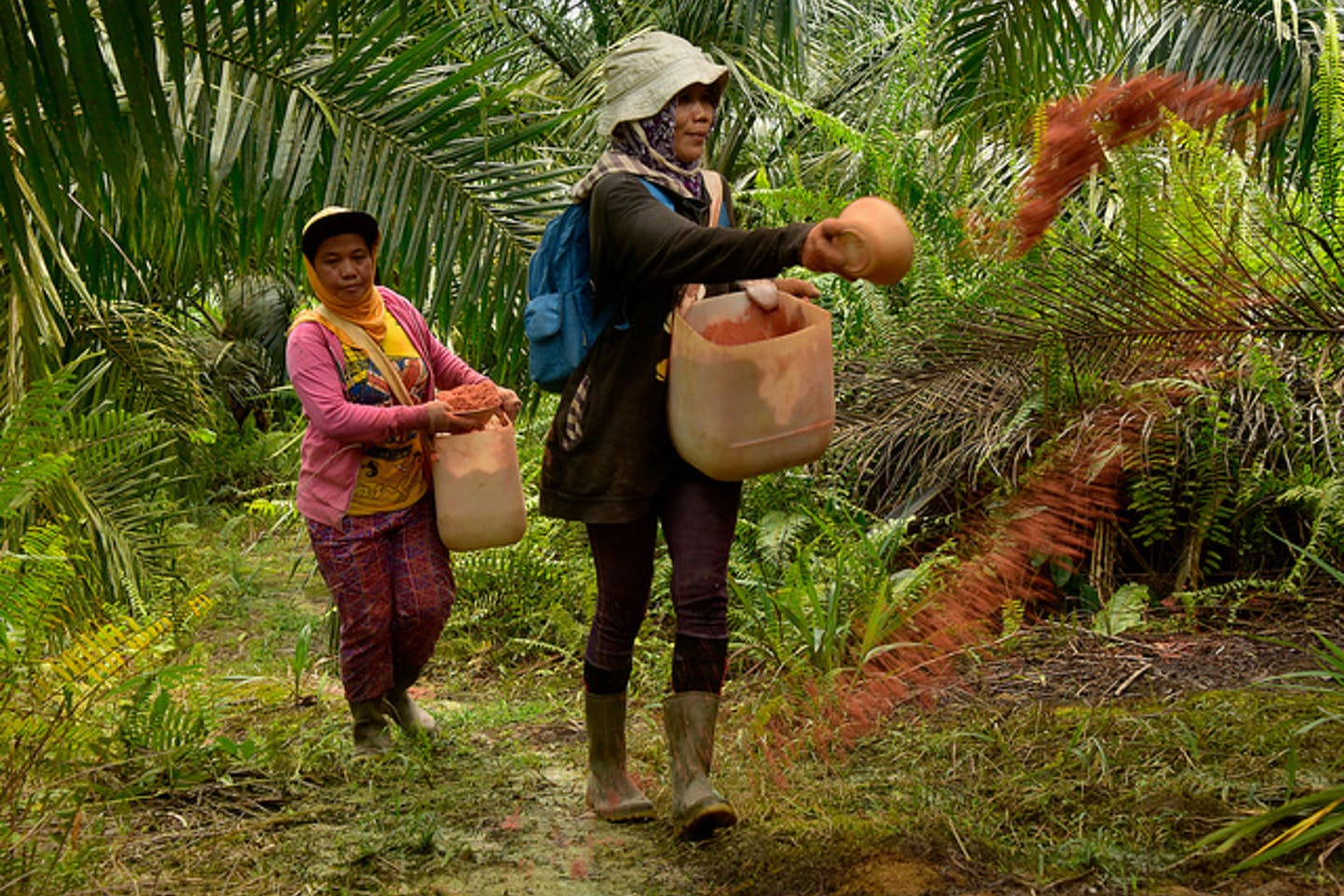 women palm oil