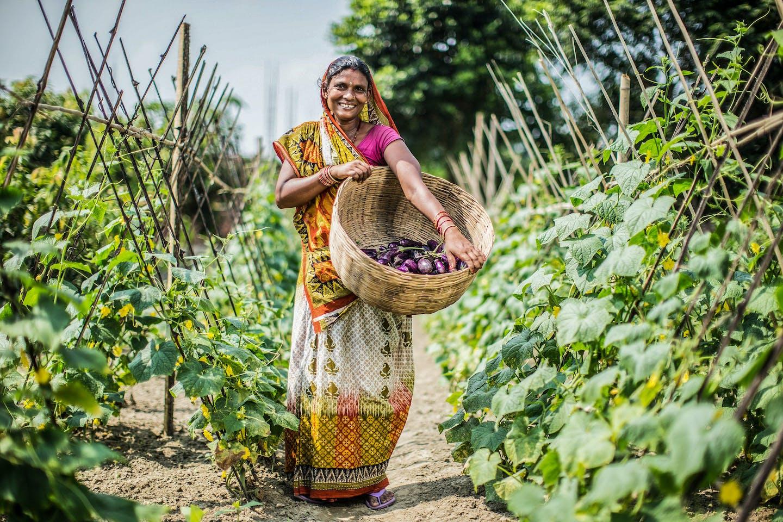 happy harvest in nepal