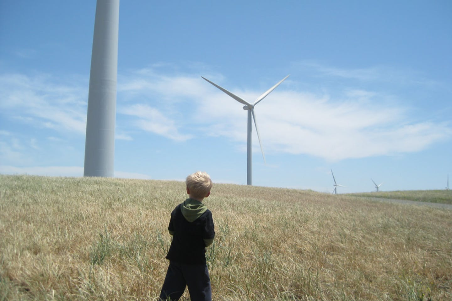 A child looks up at wind turbines