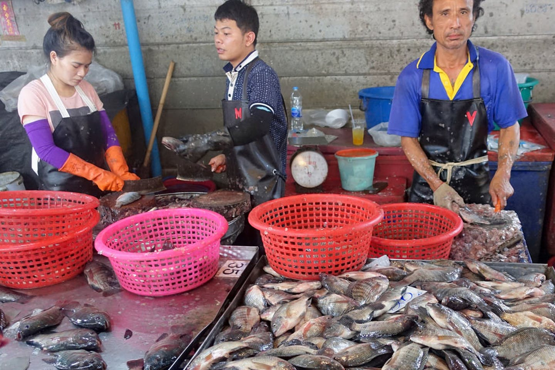 Pak Nam fish market Thailand