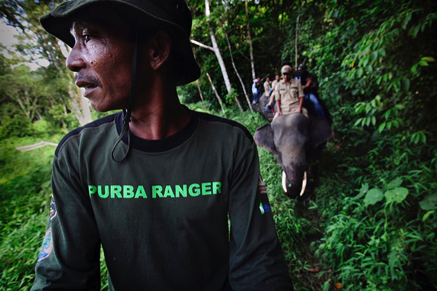 Forest patrol in Leuser Aceh Indonesia
