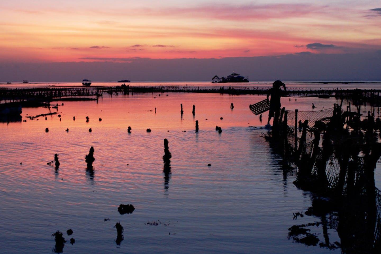 fish farming indonesia