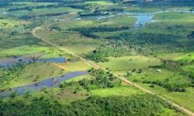 The world's top biodiversity investment returns