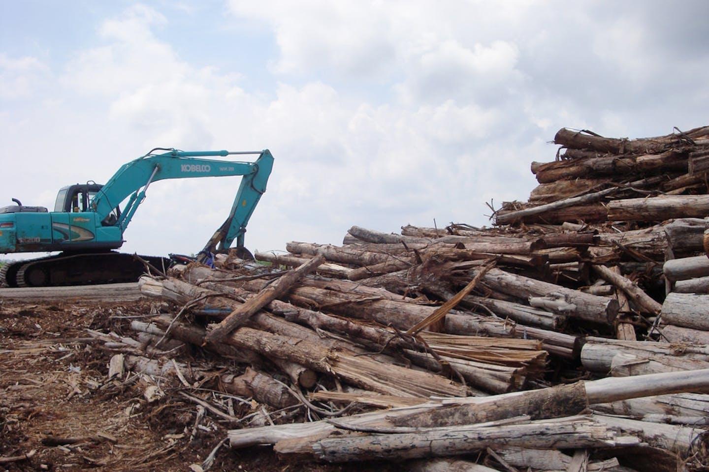 Logs and machine