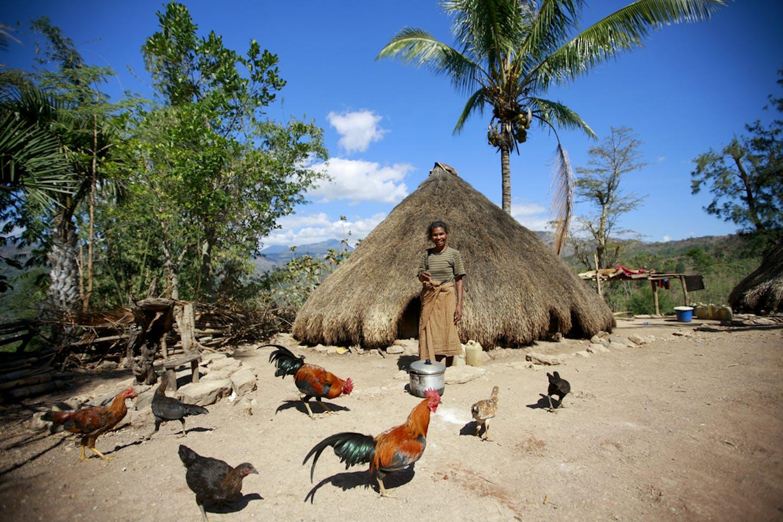 woman home east timor