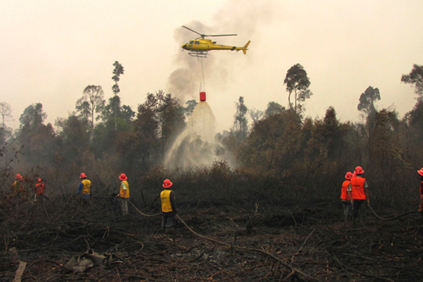 Forest fires in Riau 2014
