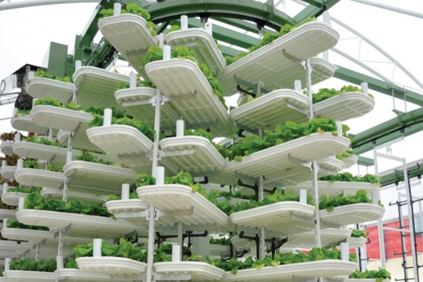vertical farming ppus