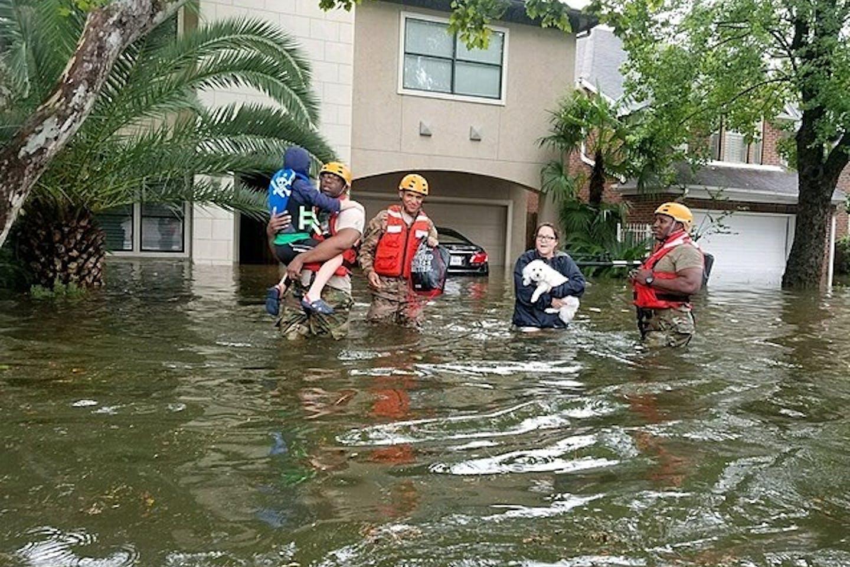Harvey rescue