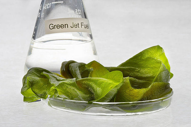 Jet fuel produced from algae