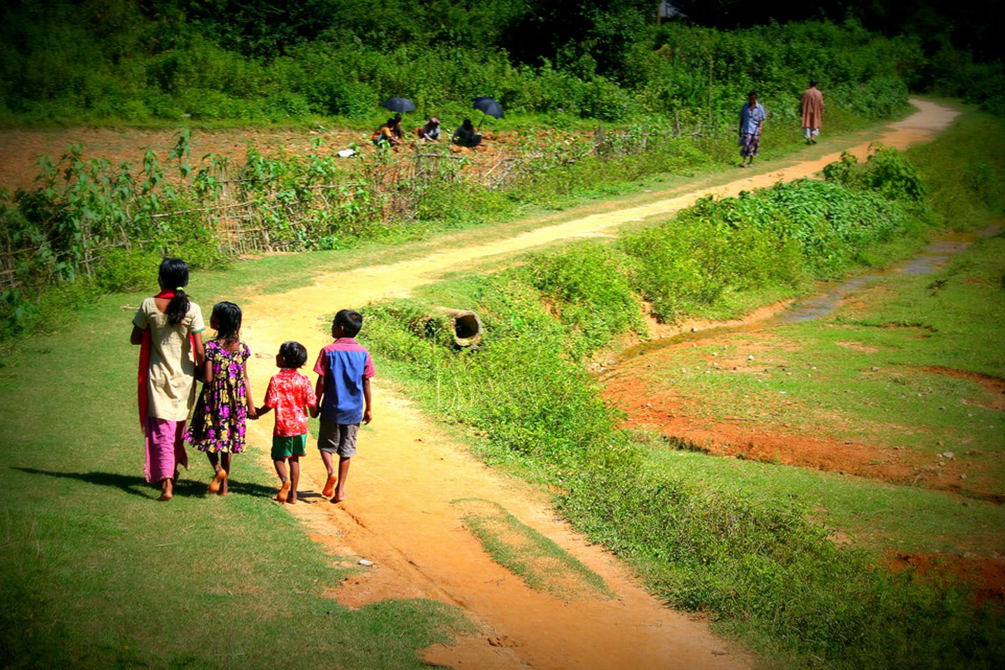 bangladesh village