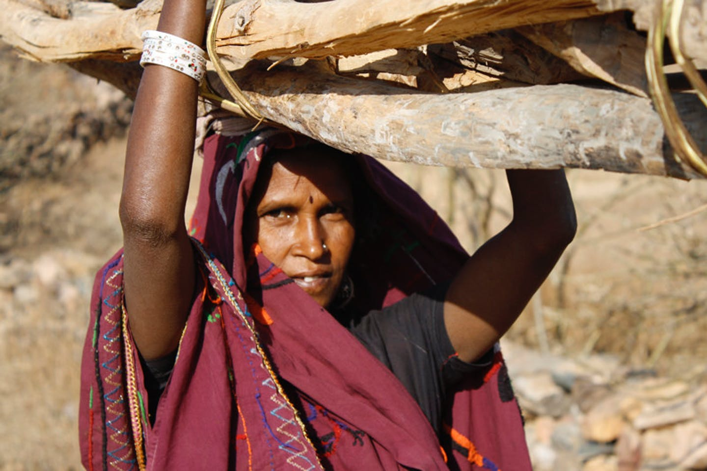 Woman carrying firewood in India