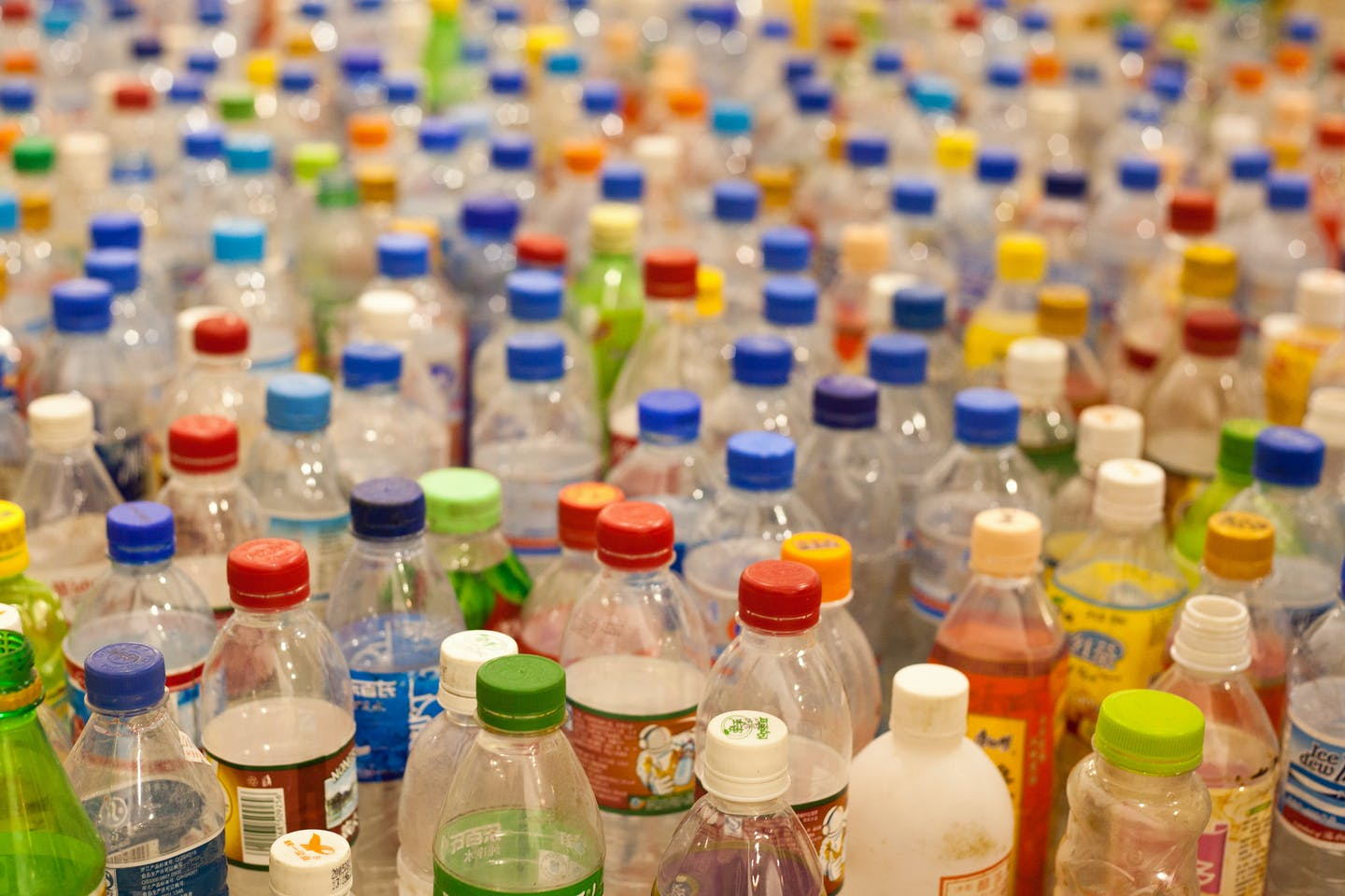 a sea of plastic bottles lined up