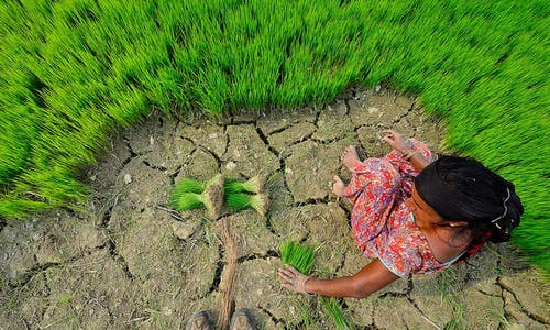 4 ways we can step up adaptation and protect vulnerable communities from climate change impact