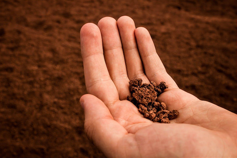 soil on hand