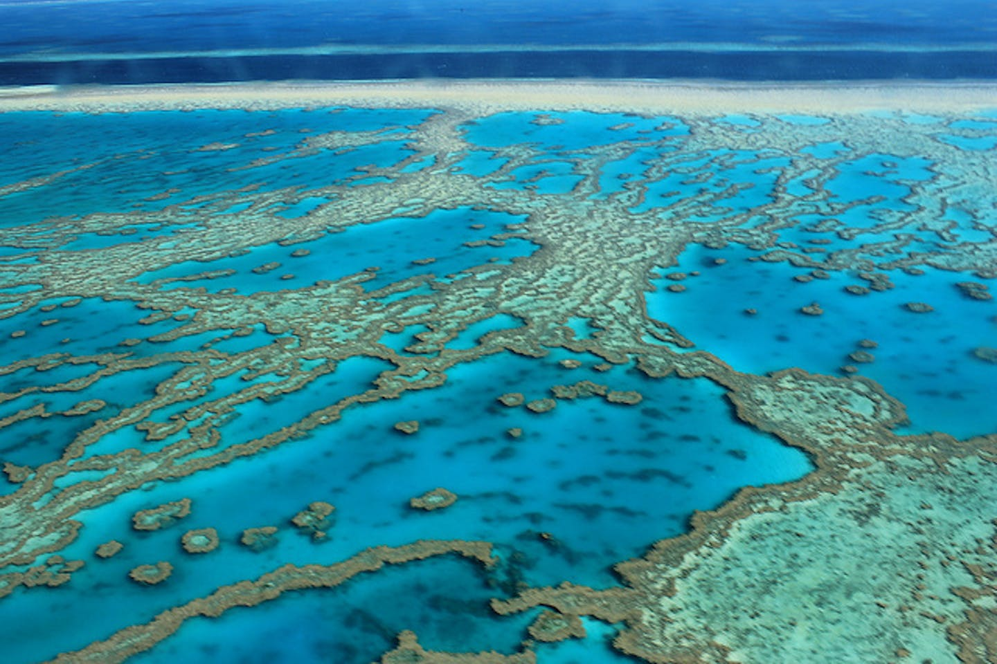 Great Barrier Reef disappearance