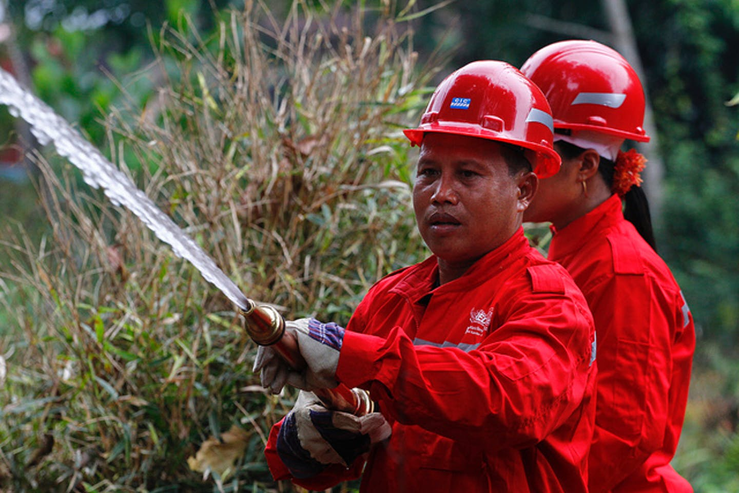 fire drill in Indonesian forest