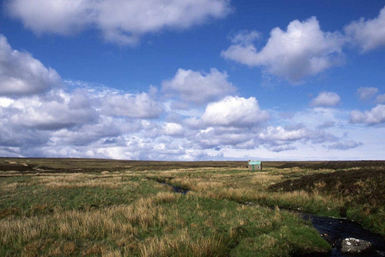Peat moorland