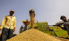 Why sustainability standards are important for India's growth