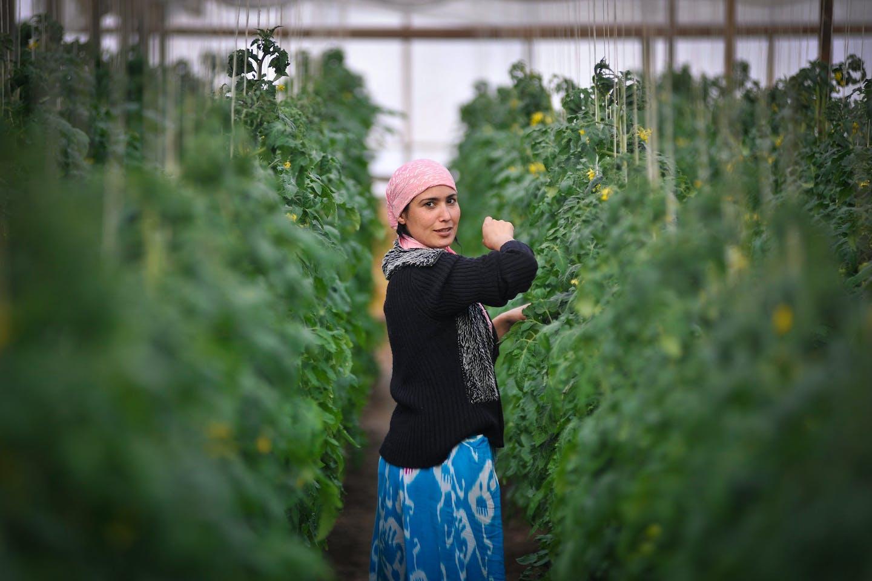 woman greenhouse uzbekistan