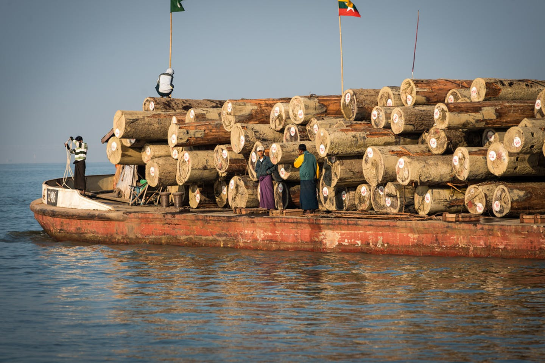 timber myanmar