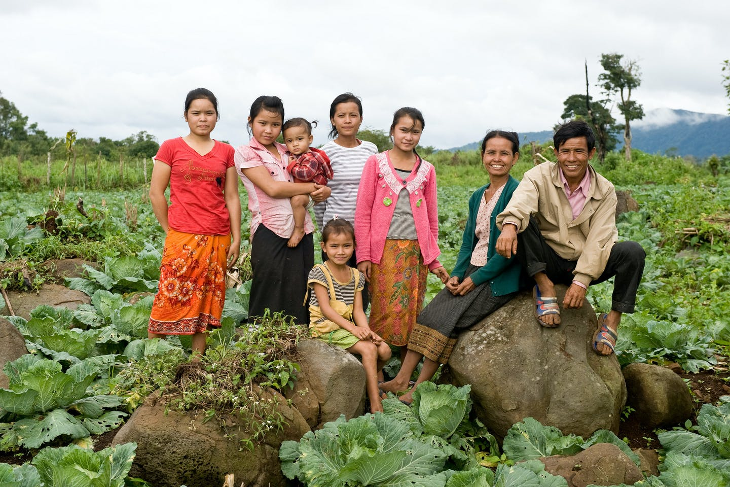 cabbage farmers in Lao
