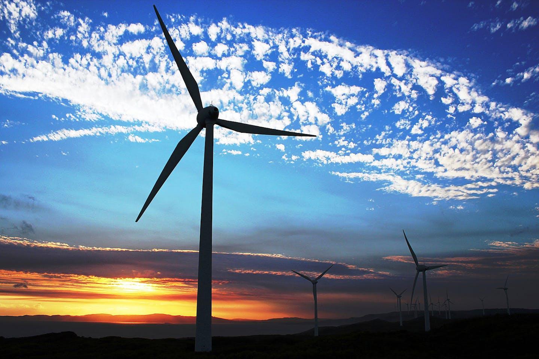 albany wind farm western australia